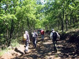 Escursioni -trekking organizzato